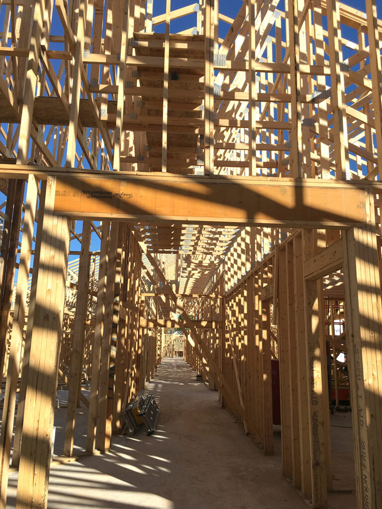Extensive Truss and Framing System Laurel Grove Assisted Living Facility 1